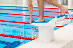 Young muscular swimmer in low position on starting block in a swimming pool Stock Images