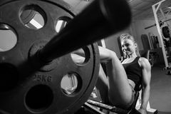 Young muscular woman doing workout Stock Image