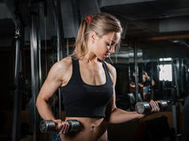 Young muscular woman doing workout Stock Photography