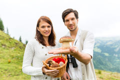 Young mushroom pickers in the Bavarian alps Stock Photography