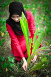 Young muslim women sets tree outdoor Royalty Free Stock Image