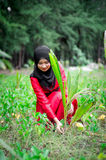 Young muslim women sets tree outdoor Stock Photos