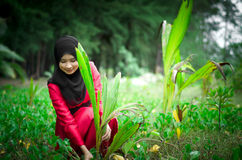 Young muslim women sets tree outdoor Royalty Free Stock Photo