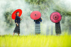 Young Myanmar stock images