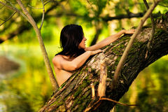 Young naked beautiful Caucasian woman standing in water in rainforest with eyes closed, hiding behind a tree. Young naked beautiful Caucasian woman standing in Royalty Free Stock Photo