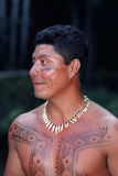 Young native indian of Brazil. The Guajajara are one of the most numerous indigenous people (around 13, 500) of Brazil. Inhabit 11 indians lands, all located in royalty free stock photography