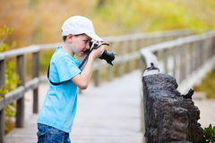 Young nature photographer Stock Image