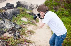 Young nature photographer Royalty Free Stock Images