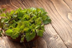 Young nettle leaves in a pot on a rustic background royalty free stock images