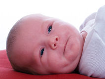 Young new-born infant girl on red pillow Stock Image