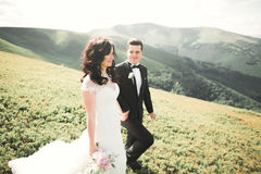 Young newly wed couple, bride and groom kissing, hugging on perfect view of mountains, blue sky Stock Images