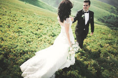 Young newly wed couple, bride and groom kissing, hugging on perfect view of mountains, blue sky Stock Photos