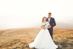 Young newly wed couple, bride and groom kissing, hugging on perfect view of mountains, blue sky Royalty Free Stock Images
