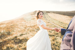 Young newly wed couple, bride and groom kissing, hugging on perfect view of mountains, blue sky Royalty Free Stock Photography