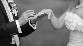 Young newly wed couple. Groom holding wedding ring and hand of his bride, hands of a young newly wed couple Royalty Free Stock Photos