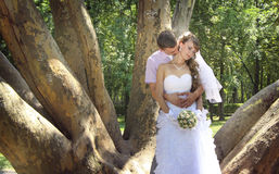 Young newlyweds embracing in the park. In the shadow of giant platan Stock Photos