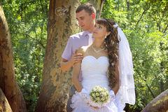 Young newlyweds kembracing in the park Royalty Free Stock Photos