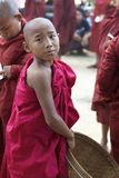 Young Novice Monk Myanmar Burma Royalty Free Stock Photo