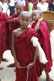 Young Novice Monks Myanmar Burma Royalty Free Stock Image