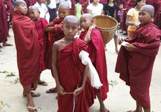 Young Novice Monks Myanmar Burma Royalty Free Stock Photography