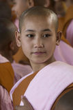 Young Novice Nun - Bago - Myanmar (Burma). A young novice Burmese Buddhist nun. Bago in Myanmar (Burma Royalty Free Stock Photography