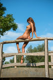 Young nude woman Royalty Free Stock Photography