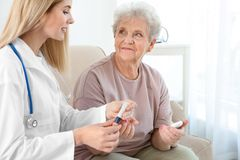 Young nurse examining elderly woman with glucometer. Young nurse examining elderly women with glucometer at home royalty free stock image