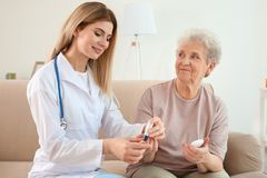 Young nurse examining elderly woman with glucometer. Young nurse examining elderly women with glucometer at home stock photo
