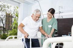 Young Nurse Helping Patient In Using Walker At Nursing Home. Young female nurse helping senior male patient in using walker at nursing home Stock Photo