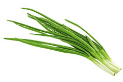 Young onion on white background. Close-Up. Isolated. Royalty Free Stock Photos