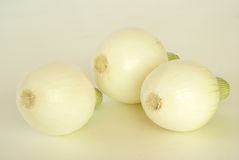 Young onions Royalty Free Stock Photo