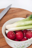 Young onions and chopped radishes in the white bowl.  Royalty Free Stock Images