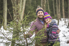 Young pair with a christmas tree in the forest Stock Photography