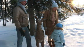 Young parents with a child standing in forest stock video