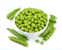 Young peas Stock Photography