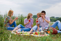 Young People At The Picnic Stock Photos
