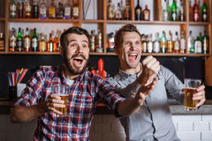 Young people with beer watching football in a bar Royalty Free Stock Photography