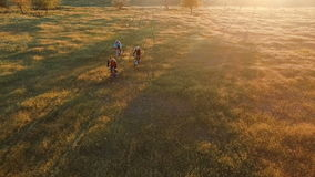 Young people cycling on bicycles through green and yellow summer meadow field. Group of friends riding bikes. Aerial survey stock footage