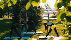 Young people doing yoga outside stock video footage