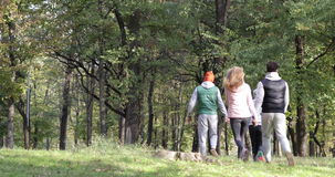 Young People Group Walking Forest Two Couple Holding Hands Outdoor Morning Autumn Park. Slow Motion 60 Fps stock footage