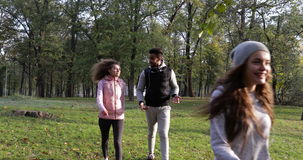 Young People Group Walking Two Couple Outdoor, Friends Speaking Morning Autumn Park. Slow Motion 60 Fps stock video footage