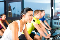 Young People Spinning in the gym. Young People - group of women and men - doing sport Spinning in the gym for fitness Stock Image