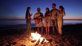 Young people having fun around the campfire. stock footage