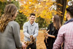 Young people having fun in the autumn park Royalty Free Stock Photos