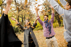 Young people having fun in autumn park Royalty Free Stock Photos