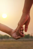 young people  holding hands on  sunset. Stock Images