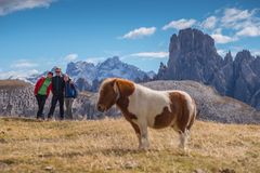 Young people in italien dolomites, loving nature and climbing, beautiful view scenery tre cime di lavaredo Royalty Free Stock Photography