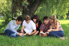 Young people on nature. Company of young people on nature Stock Image
