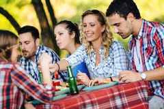 Young people in nature having fun and bbq party stock image