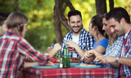 Young people in nature having fun Royalty Free Stock Photos